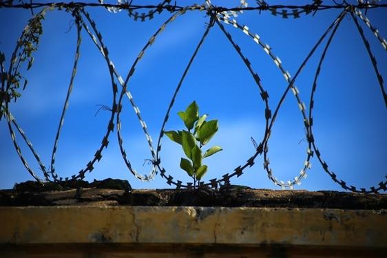 Warunkowe umorzenie postępowania karnego, jako alternatywa dla skazania